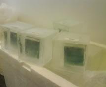 Convites em Escultura em Gelo