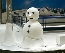 Escultura em Gelo feita para o SESC