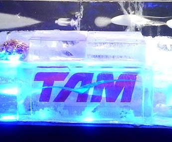 Escultura em Gelo para TAM