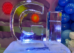 Escultura em Gelo para Festa Tema Frozen