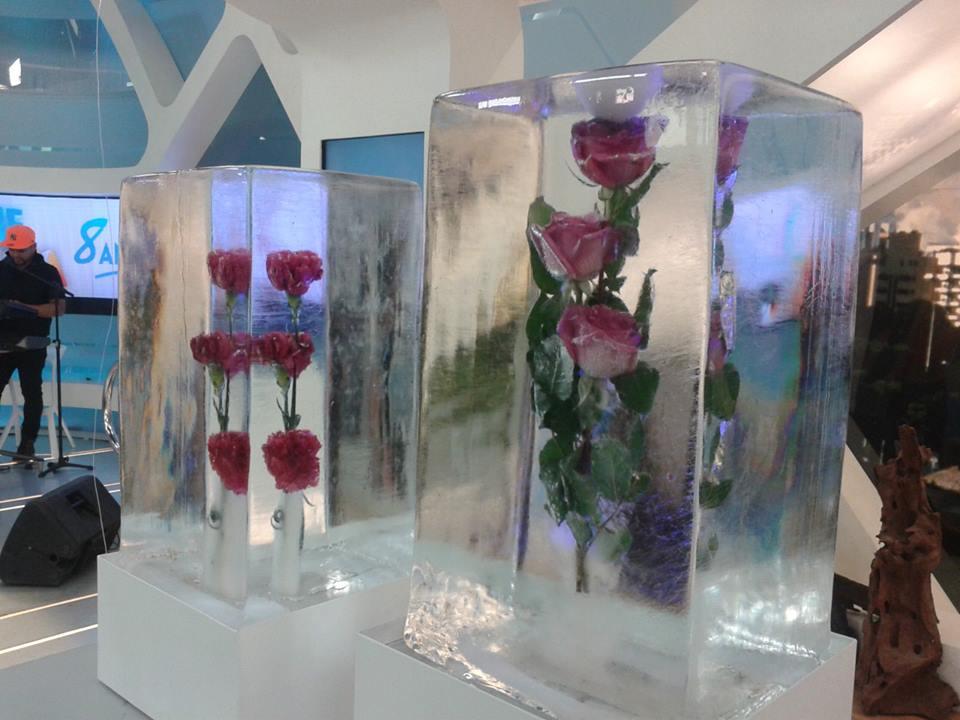 Escultura em Gelo no Hoje em Dia