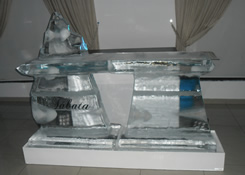Escultura em Gelo de Ice Bar para Festa de Debutante