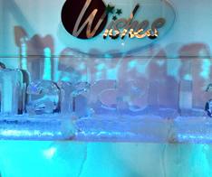 Escultura em Gelo para Aniversário tema Frozen
