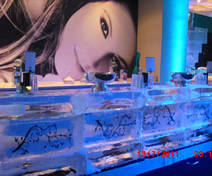 Escultura de Ice Bar para Anivesário