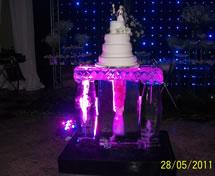 Escultura em Gelo para Casamento