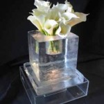 Escultura de Vaso em Gelo