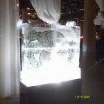 Escultura em Gelo para Formatura de Medicina