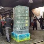 Esculturas em gelo na Ação H2OH Limoneto