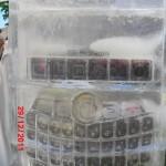 Escultura em Gelo de Blackberry