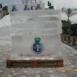 Escultura em Gelo na Promoção da Vick