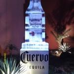Escultura em Gelo da Tequila José Cuervo