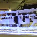 Escultura em Gelo para o Salão do Automóvel Toyota Hilux
