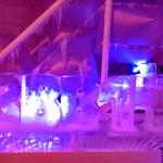 Esculturas em Gelo no BBB 14 Festa na Sibéria