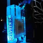 Escultura em Gelo de Coqueteleira Beveldere