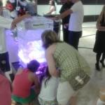 Escultura em Gelo para Ação Haagen Dazs Shopping Morumbi