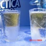 Escultura de Bar de Gelo para Antártica Sub Zero