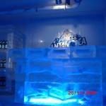 Escultura em Gelo de Icebar para Festas e Eventos