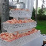 Escultura em Gelo para Casamento em Maringá