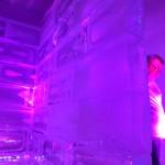 Escultura em Gelo para Estúdio Fotográfico