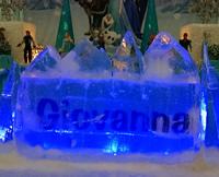 Escultura em Gelo de Iceberg para Aniversário