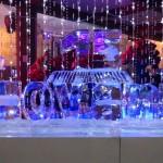 Escultura em Gelo para Festa de Debutante em Rio Claro