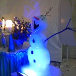 Escultura em Gelo para Aniversário do Frozen